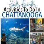 Family Friendly Activities To Do in Chattanooga