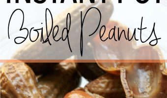 How to Make Boiled Peanuts in the Instant Pot