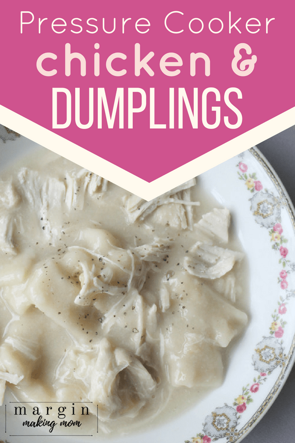 china bowl with dumplings and shredded chicken in creamy broth