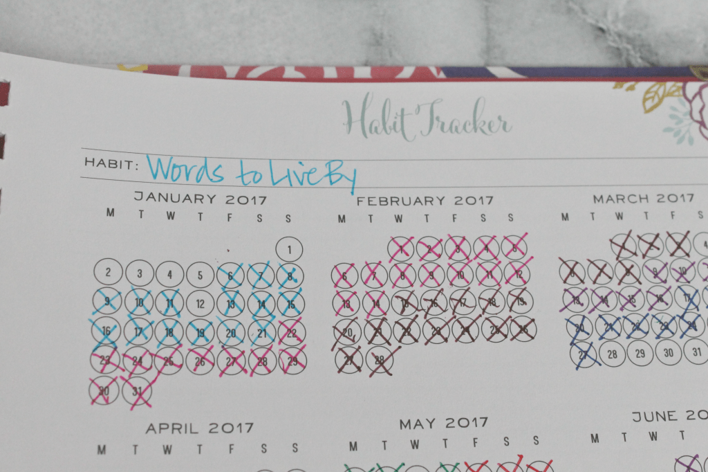 Track your habits with the Brilliant Life Planner's Habit Tracker!