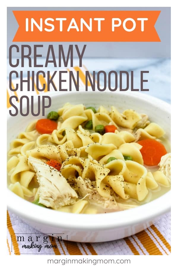 white bowl full of chicken noodle soup made in the Instant Pot