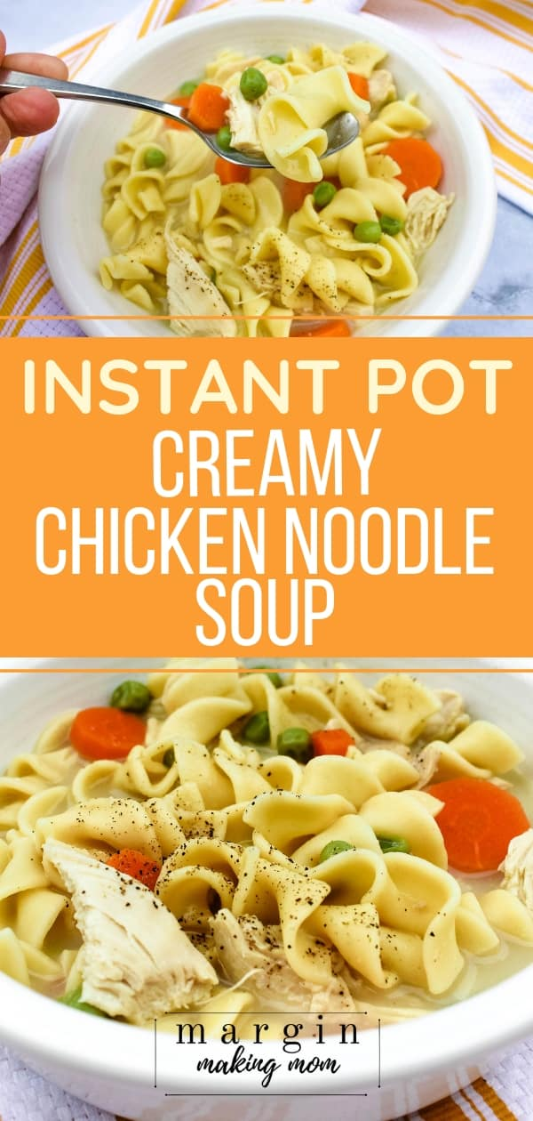 white bowl filled with Instant Pot creamy chicken noodle soup