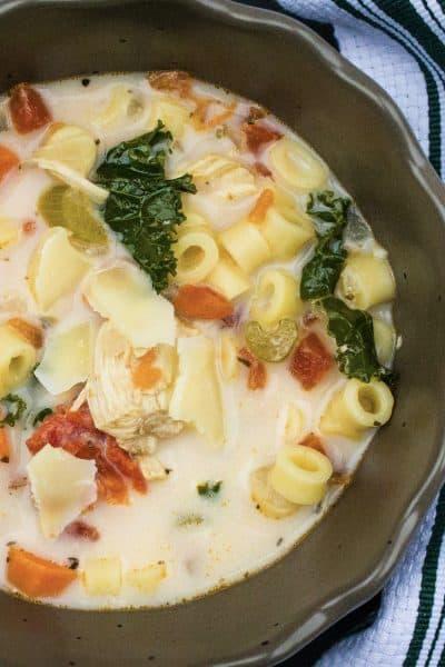 Instant Pot Italian chicken soup
