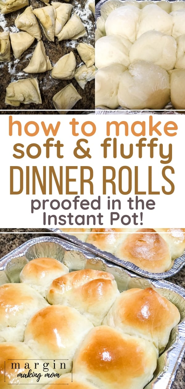 Dinner rolls made from dough that proofed in the Instant Pot