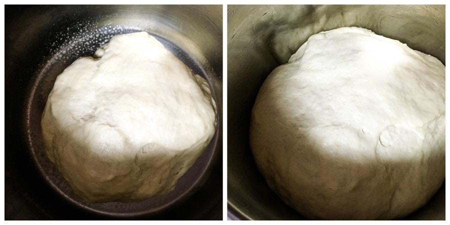 dough rising in the Instant Pot insert pot