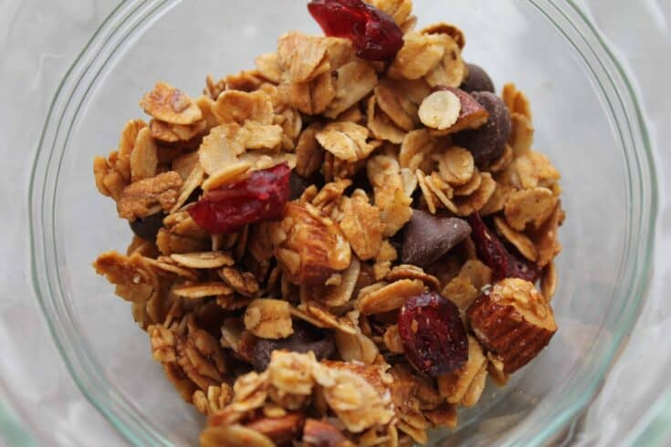 Easy Chocolate Cranberry Granola