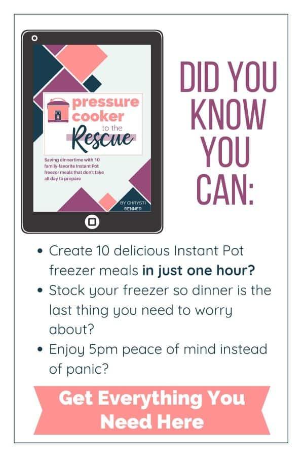 Instant Pot freezer meal plan benefits
