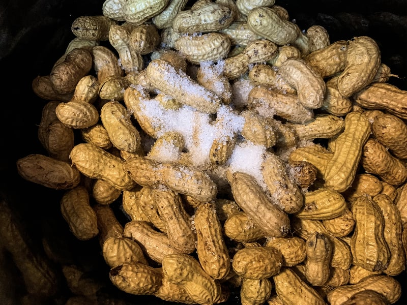 raw peanuts topped with coarse sea salt in a crockpot slow cooker