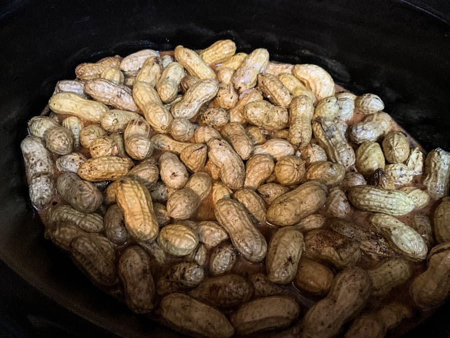 raw peanuts and Cajun seasonings in a slow cooker
