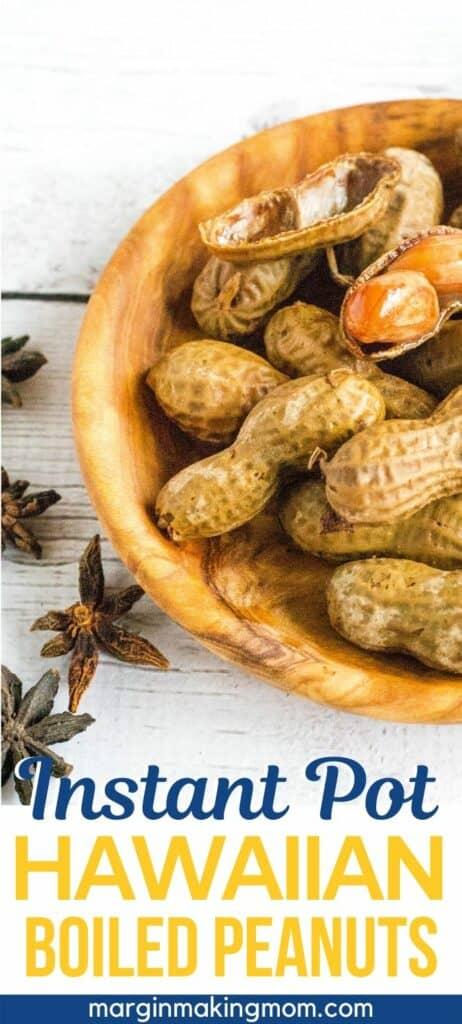 Hawaiian boiled peanuts in a bowl next to dried star anise pods