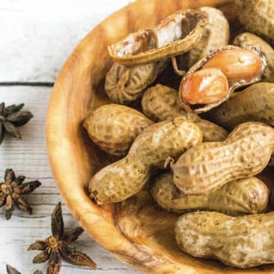 Instant Pot Hawaiian Boiled Peanuts