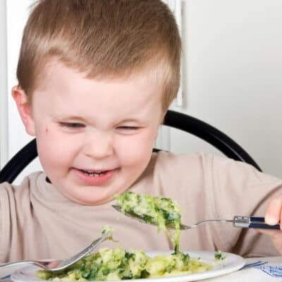 Healthy Meals for Picky Eaters (That They Won't Scoff At!)