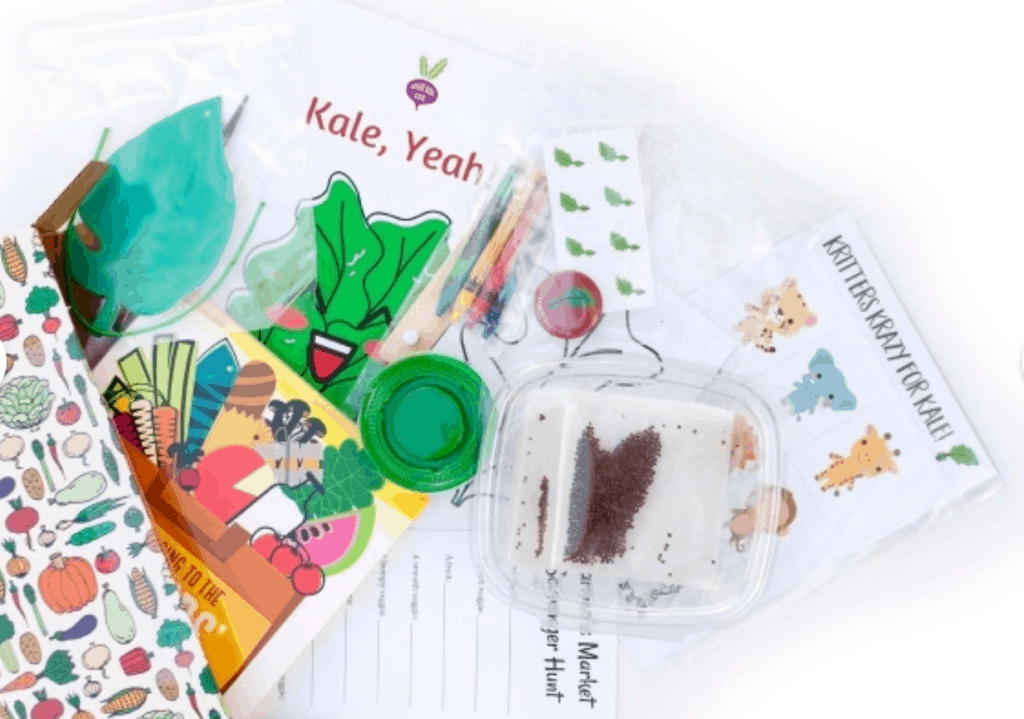 contents of a Veggie Buds box for kids