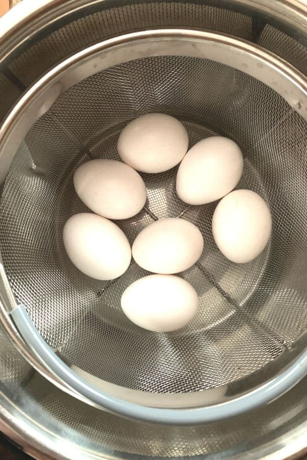 eggs in a mesh steamer basket in the Instant Pot