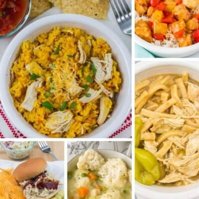 30+ of the Best Instant Pot Chicken Dinner Recipes