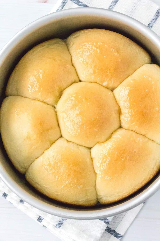 overhead view of a pan of freshly baked frozen dinner rolls
